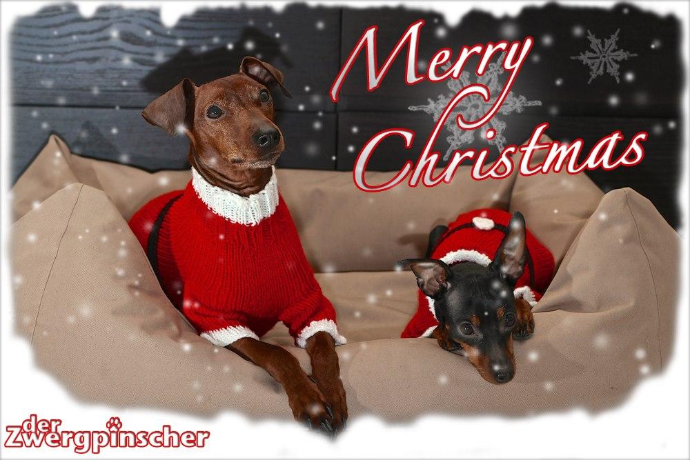 Frohe Weihnachten Euch Allen.Photodesignz Wünscht Euch Allen Frohe Weihnachten Photodesignz